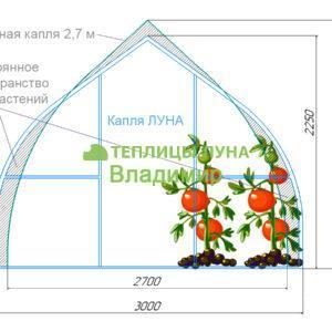 Теплица ЛУНА капля 3х6 м шаг дуг 65 см
